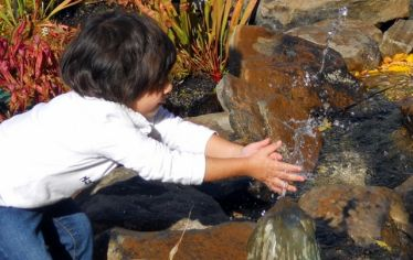 "A young child outdoors cupping her hands in a bubbling stream. Children who deeply experience nature can to grow into ""Earth stewards"" and restore the planet's health and future"