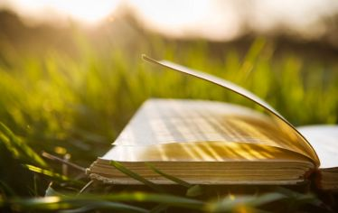 An open book. Tufts faculty, staff, and alumni share their summer book recommendations